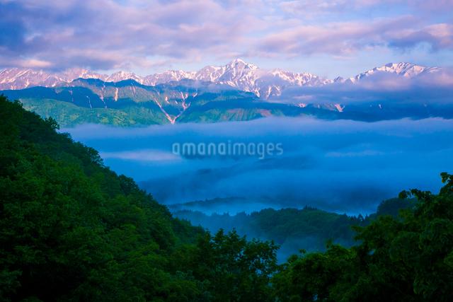 朝の白馬連峰の写真素材 [FYI01648106]