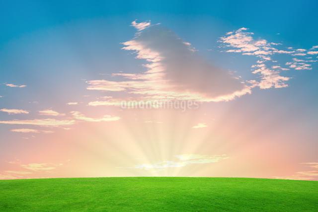 夜明けの空と草原の写真素材 [FYI01648262]