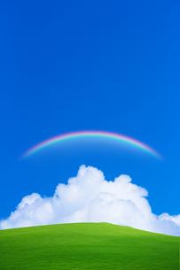 緑の草原と青空に虹の写真素材 [FYI01648263]