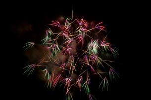 赤が綺麗な花火の閃光の写真素材 [FYI01649214]
