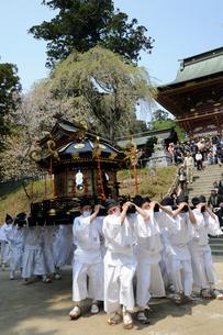 塩竃神社花祭りの写真素材 [FYI01649386]