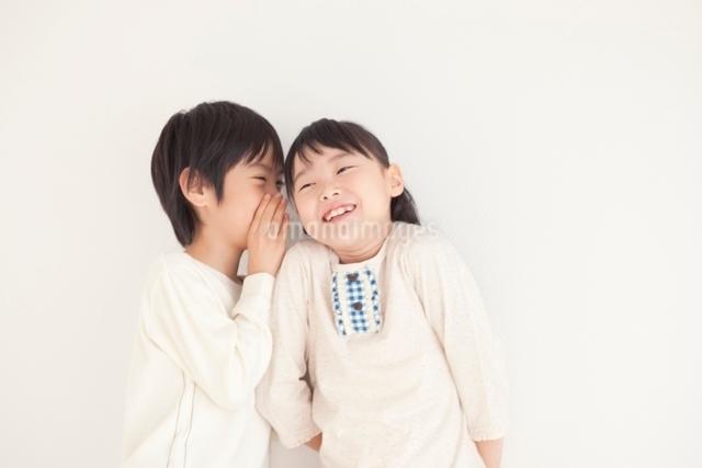 内緒話をする男の子と女の子の写真素材 [FYI01650450]