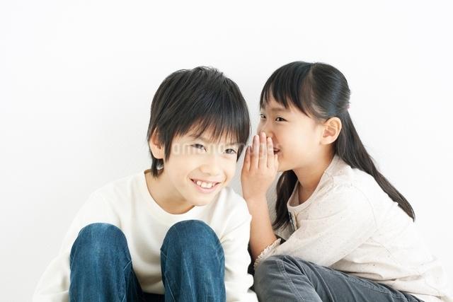 内緒話をする男の子と女の子の写真素材 [FYI01650889]