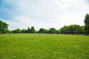 公園の写真素材 [FYI01650953]
