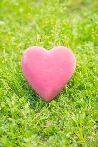 ピンク色のハートの写真素材 [FYI01652161]