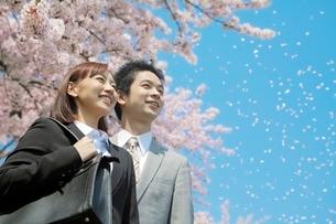 桜とビジネスマンとビジネスウーマンの写真素材 [FYI01652287]