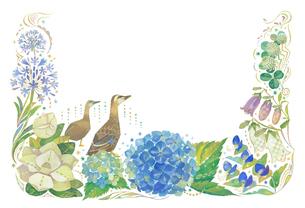 6月をイメージした花とカルガモの飾りのイラスト素材 [FYI01652832]