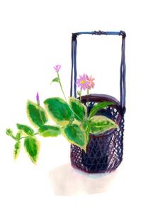 かごの花瓶にいけたピンクの花と葉のイラスト素材 [FYI01652874]