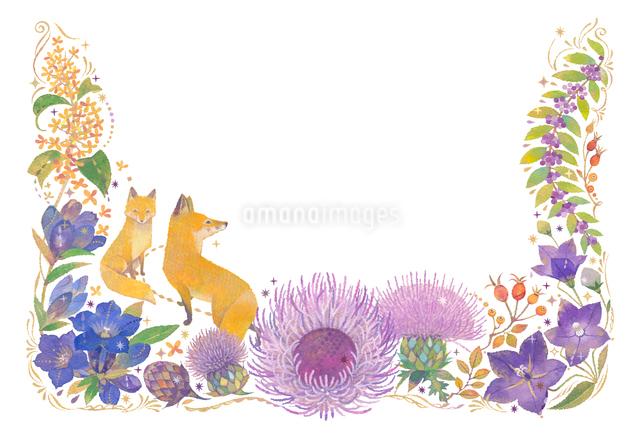 10月をイメージした花とキツネの飾りのイラスト素材 [FYI01653196]