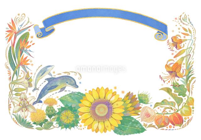 8月(夏)をイメージした花とイルカとリボンの飾りのイラスト素材 [FYI01653272]