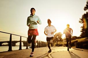 ジョギングをする男女の写真素材 [FYI01653373]
