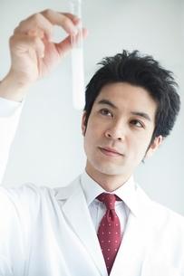 試験管を見つめる白衣を着た男性の写真素材 [FYI01653646]