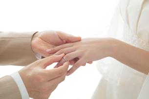 指輪交換をする新郎新婦の手元の写真素材 [FYI01653758]