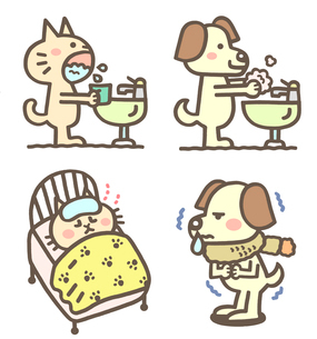 動物の手洗い、うがい、症状のイラスト素材 [FYI01653811]