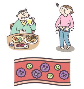 食べ過ぎ飲み過ぎ、肥満の女性、血中コレステロールのイラスト素材 [FYI01653922]