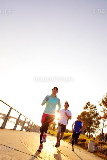 ジョギングする男女の写真素材 [FYI01654026]