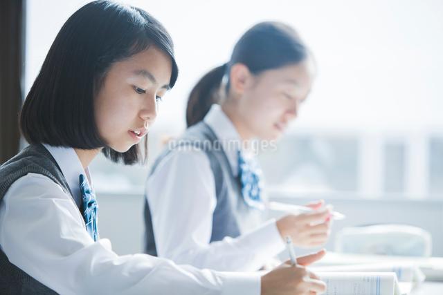 勉強する女子学生の写真素材 [FYI01654058]