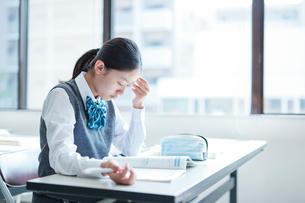 勉強する女子学生の写真素材 [FYI01654263]