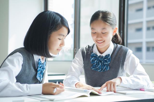 勉強する女子学生の写真素材 [FYI01654283]