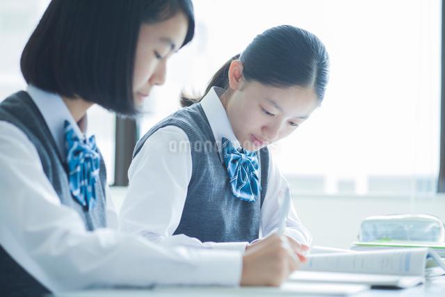 勉強する女子学生の写真素材 [FYI01654493]