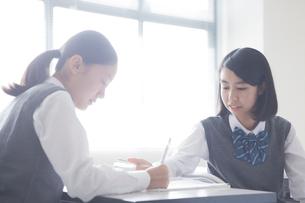 勉強する女子学生の写真素材 [FYI01655146]