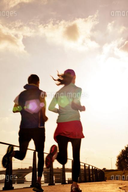 ジョギングする男女の後ろ姿の写真素材 [FYI01655151]