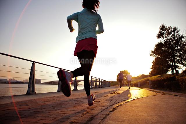 ランニングをする男女の後ろ姿の写真素材 [FYI01655271]