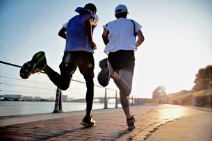 ジョギングをする2人の男性の後ろ姿の写真素材 [FYI01655796]