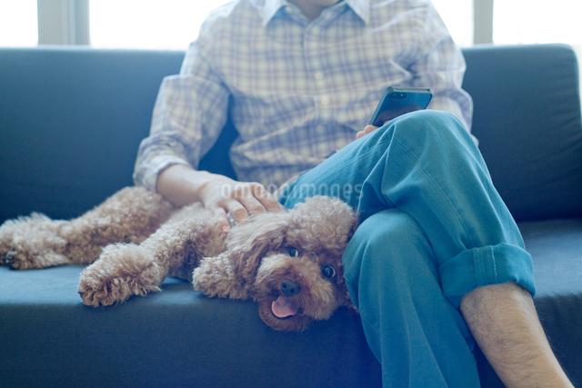 ソファに寝そべる犬と男性の写真素材 [FYI01656148]