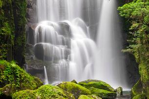 桑ノ木の滝の写真素材 [FYI01656518]