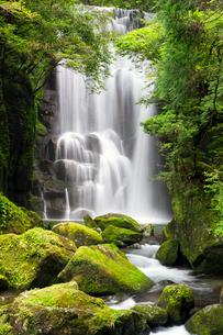 桑ノ木の滝の写真素材 [FYI01656610]