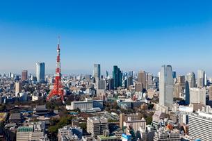 東京タワーの写真素材 [FYI01656618]