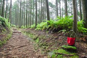 熊野古道伏拝王子近くの地蔵の写真素材 [FYI01656638]