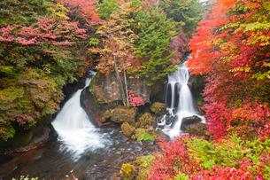 竜頭の滝紅葉の写真素材 [FYI01656685]