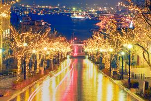 八幡坂と函館港 夜景の写真素材 [FYI01656793]