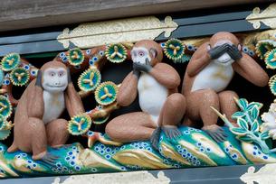 日光東照宮 神厩舎の猿の彫刻「三猿」(平成の大修理完成後)の写真素材 [FYI01656892]