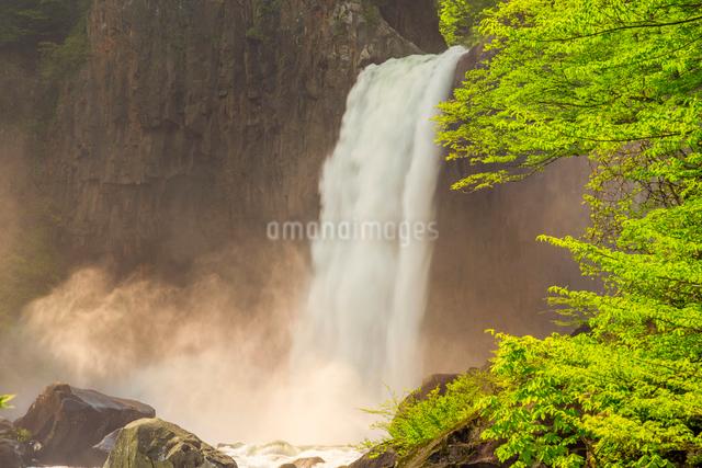 苗名滝の写真素材 [FYI01656932]