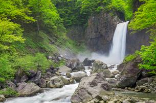 苗名滝の写真素材 [FYI01656976]