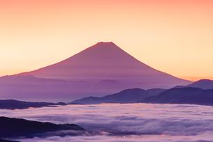 高ボッチ高原から富士山と雲海と朝焼けの写真素材 [FYI01656986]