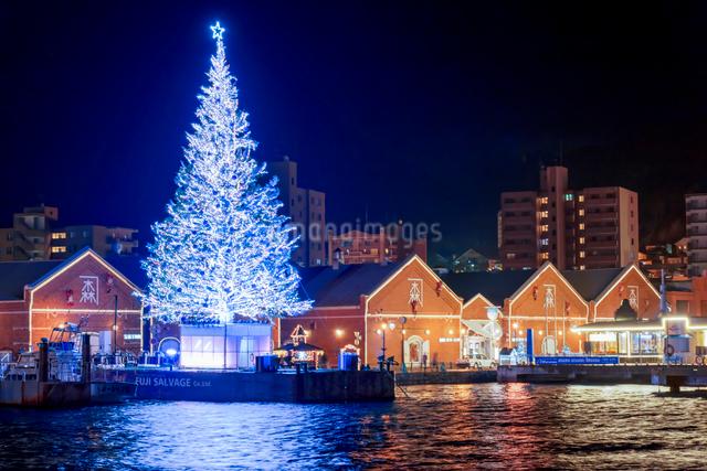 はこだてクリスマスファンタジー クリスマスツリーと金森赤レンガ倉庫の夜景の写真素材 [FYI01657010]