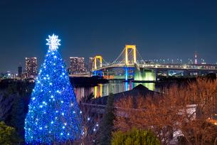 夜景 レインボーブリッジとクリスマスツリーの写真素材 [FYI01657037]