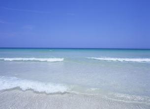 波打ち際の小さな波と水平線の写真素材 [FYI01657123]