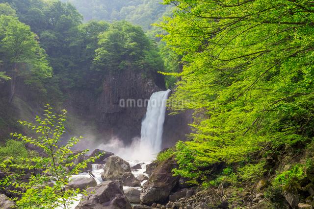 苗名滝の写真素材 [FYI01657206]