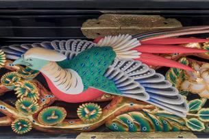 日光東照宮陽明門の彫刻 (平成の大修理完成後)の写真素材 [FYI01657216]