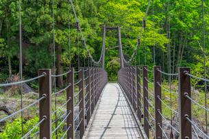 苗名滝の吊り橋の写真素材 [FYI01657299]