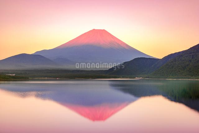赤富士 本栖湖と富士山の写真素材 [FYI01657309]