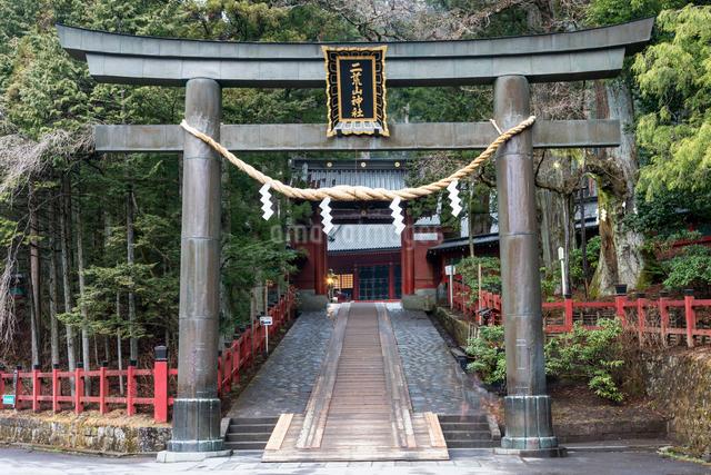 日光二荒山神社の鳥居と参道の写真素材 [FYI01657321]