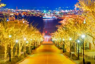 八幡坂と函館港 夜景の写真素材 [FYI01657422]