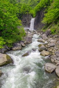 苗名滝の写真素材 [FYI01657498]
