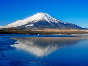 富士山 山中湖畔冬の朝の写真素材 [FYI01657525]